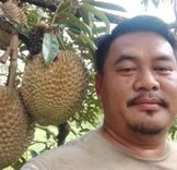 Ghani Jojo poses in front of durian fruits hanging from a tree. He has side swept short hair, a mustache and goatee.